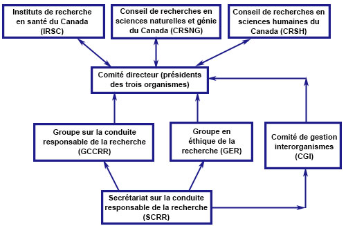 Structure organisationelle